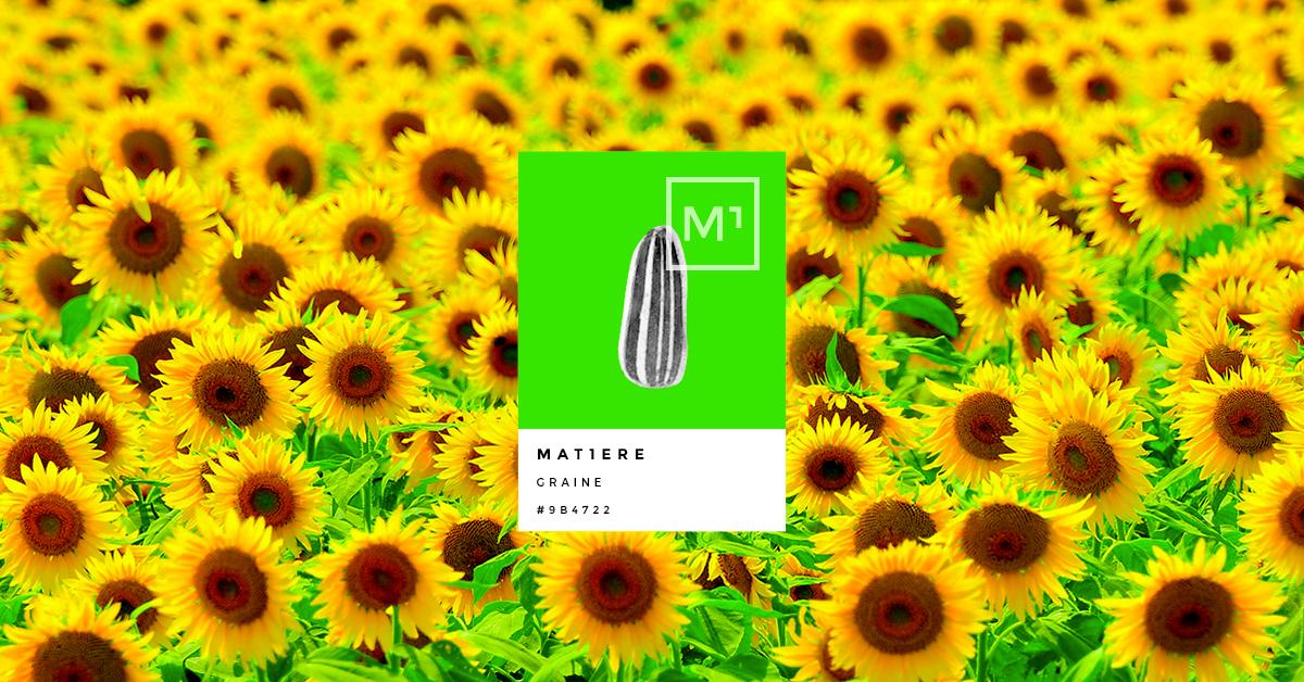 mat1ère-graine